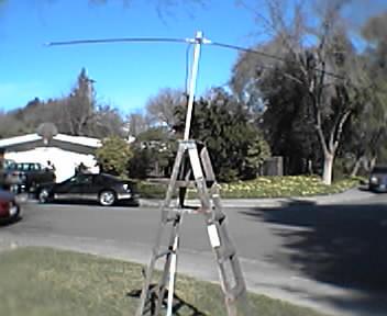 20m hamstick dipole